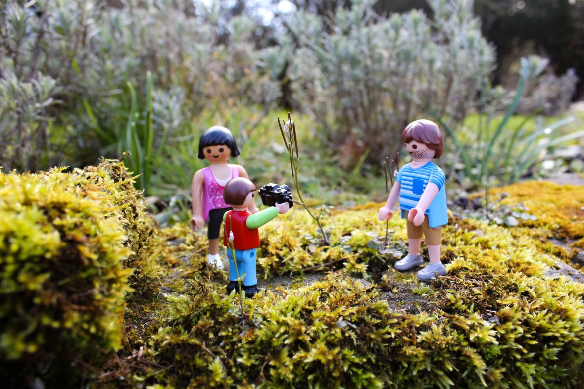 family in nature miniature toy model